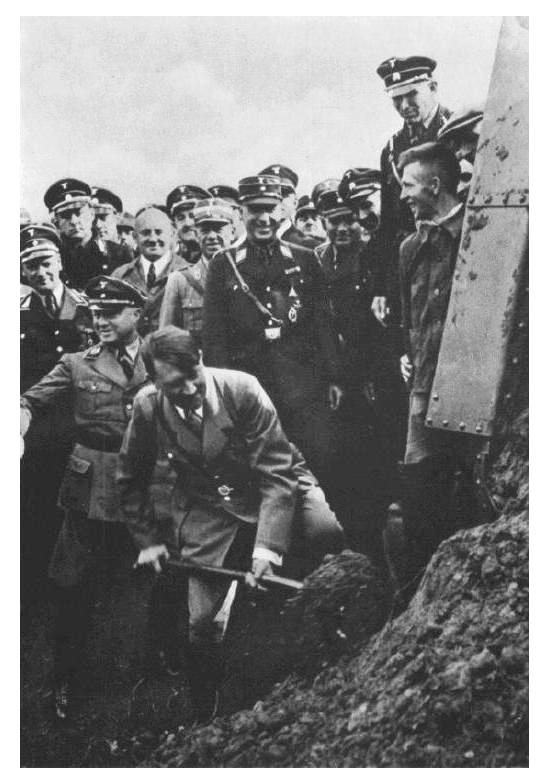 adolf hitlers henchmen carried out his final solution in world war ii